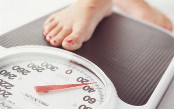 Ăn Yến Sào có Mập hoặc gây Tăng cân không ? – BÀI 17
